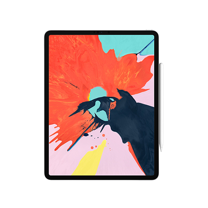 iPad Pro 11-inch 2018 - WiFi 4G 256GB Space Gray